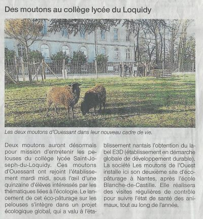 article-ouest-france-loquidy